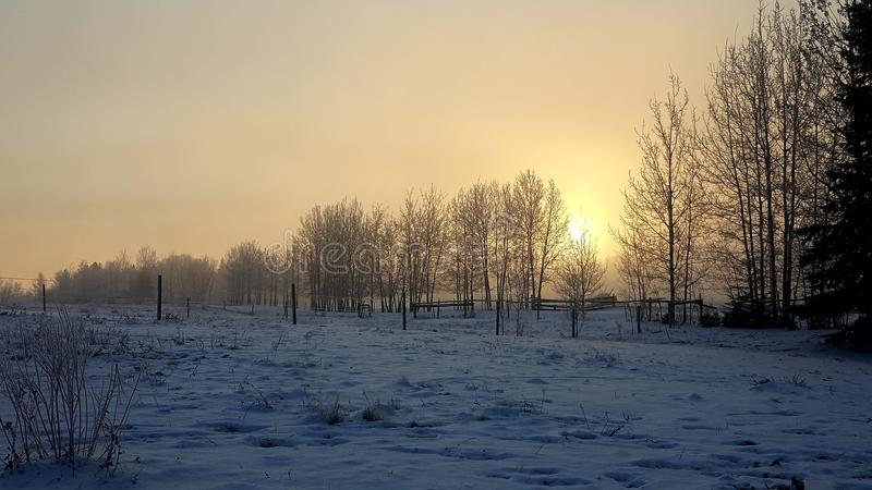 Winter sunrise Snow landscapes royalty free stock photography