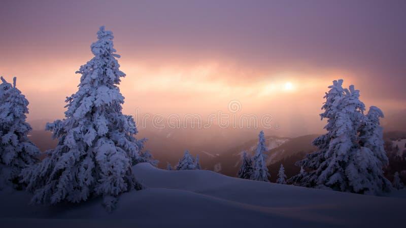 Winter sunset landscape stock photo