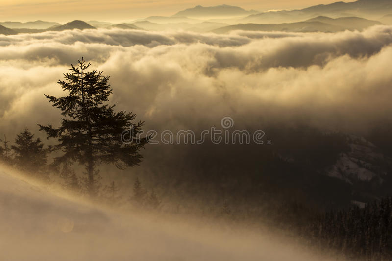 Winter sunset over the clouds - Panoramic view royalty free stock photography