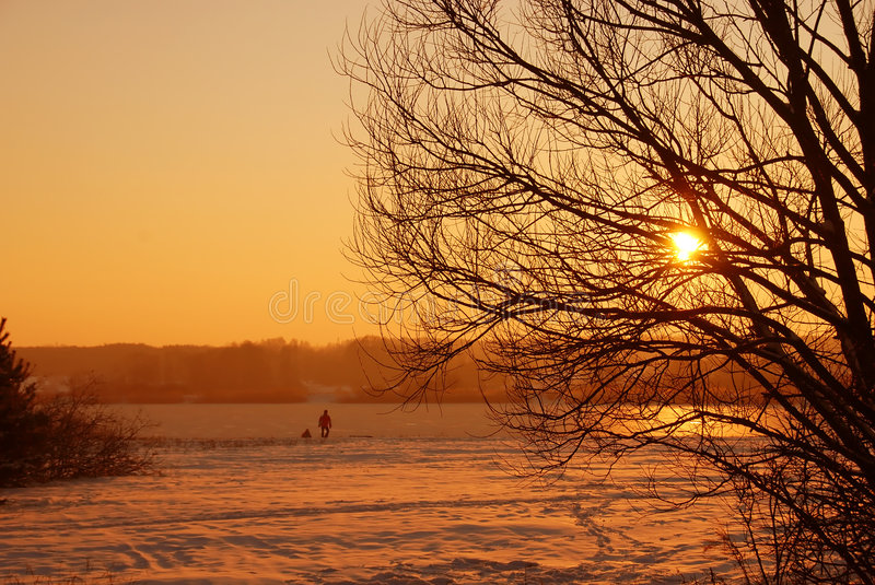 Winter sunset silhouette royalty free stock images