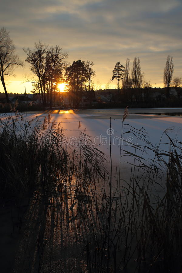 Winter sunset on the village pond. The bright rays of the setting sun glide over the ice of a small lake stock photos