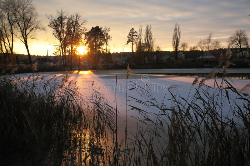 Winter sunset on the village pond. The bright rays of the setting sun glide over the ice of a small lake royalty free stock images