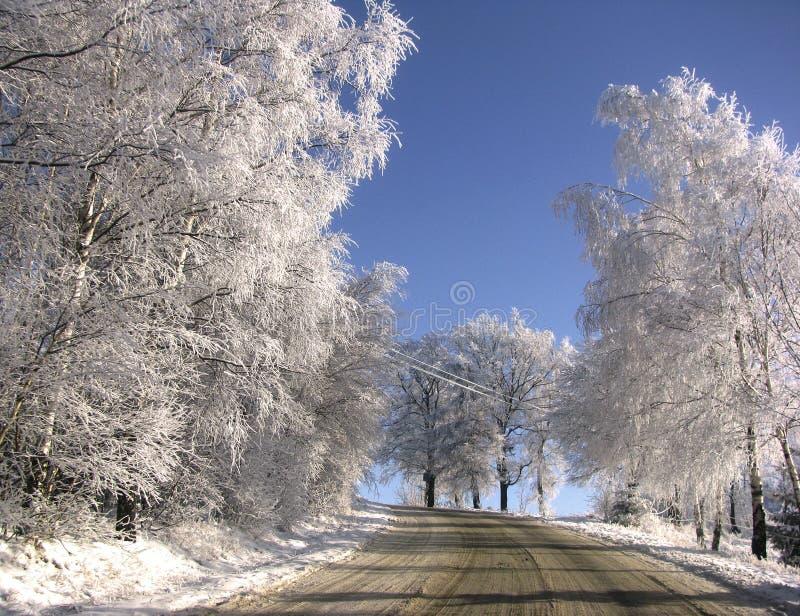 Winter Swieradow Zdroj lizenzfreies stockbild