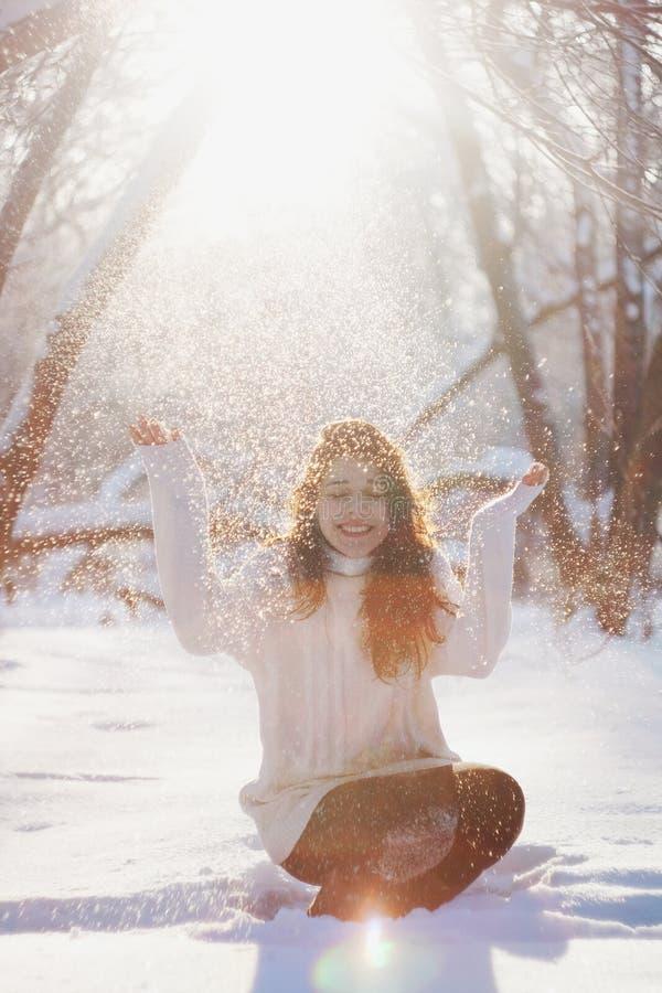 Free Winter Tale Stock Photos - 29690123