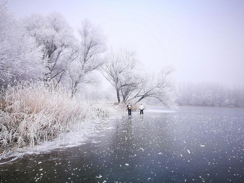 Download Winter theme stock image. Image of first, 2017, winter - 83716339