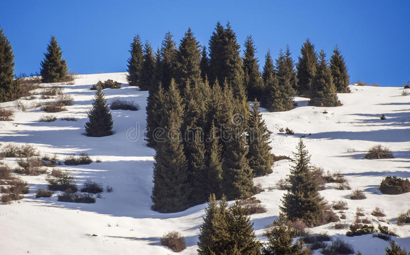 Winter in Tien Shan mountains stock photography
