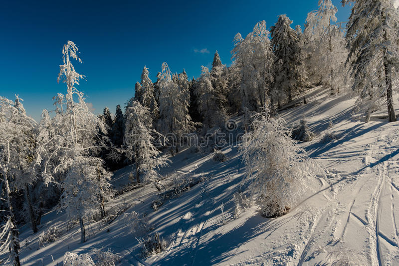 Winter time. Winter in carpathian mountains, Arieseni, Romania stock images
