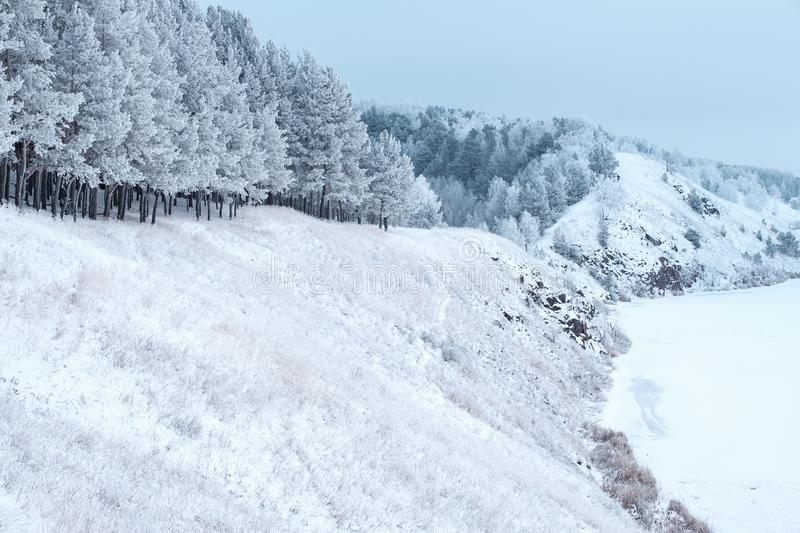Winter time slope to the river covered with snow trees on the slope after a severe frost in frost. Winter landscape on a hill stock photo