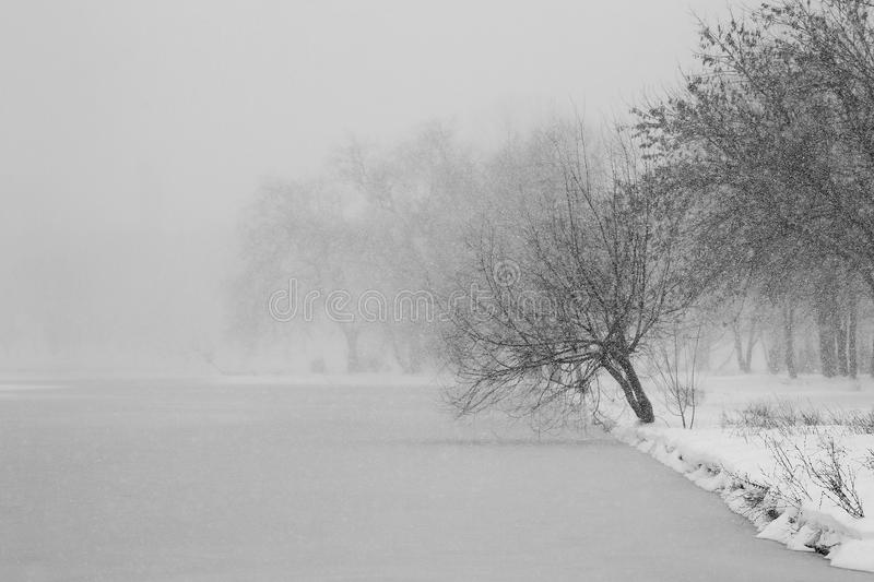 Winter time view stock photography