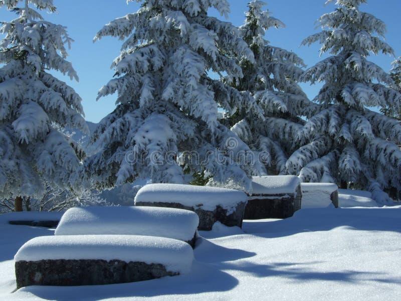 Download Winter tourism stock image. Image of snow, season, christmas - 3894821