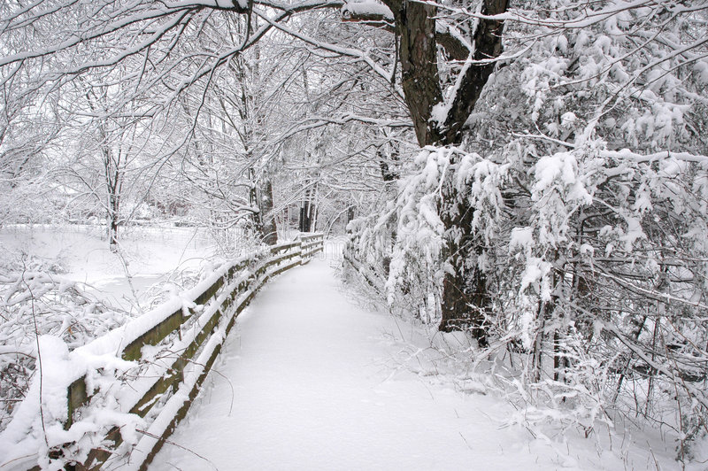 Winter Trail stock photography