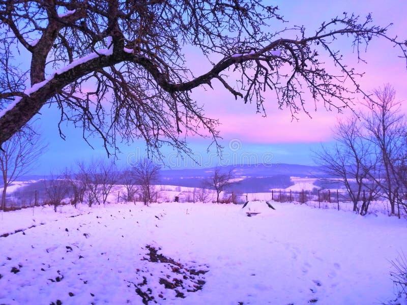 Winter& x27; tramonto crepuscolare rosa di s fotografia stock