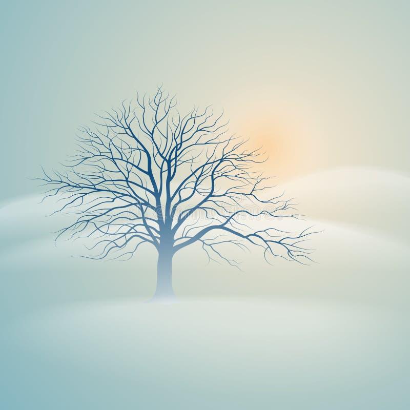 Winter tree vector illustration