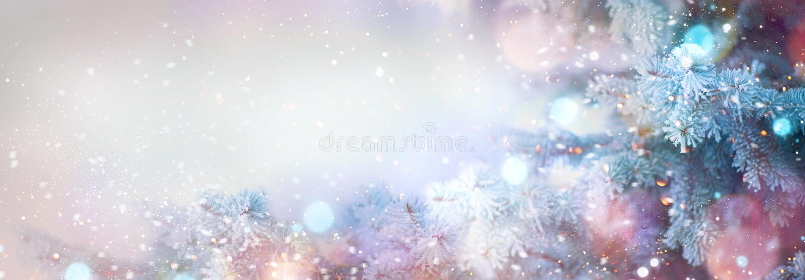 Winter tree holiday snow background stock photos