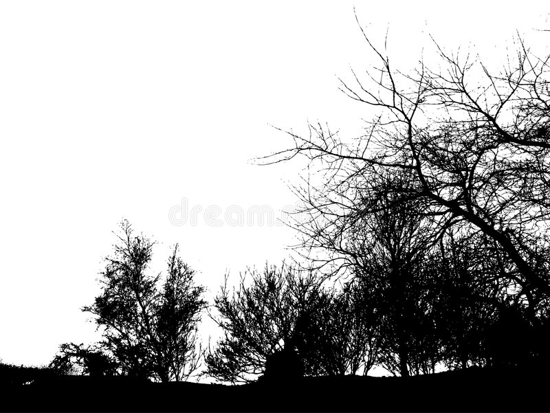Download Winter trees. stock image. Image of branches, frame, black - 517349