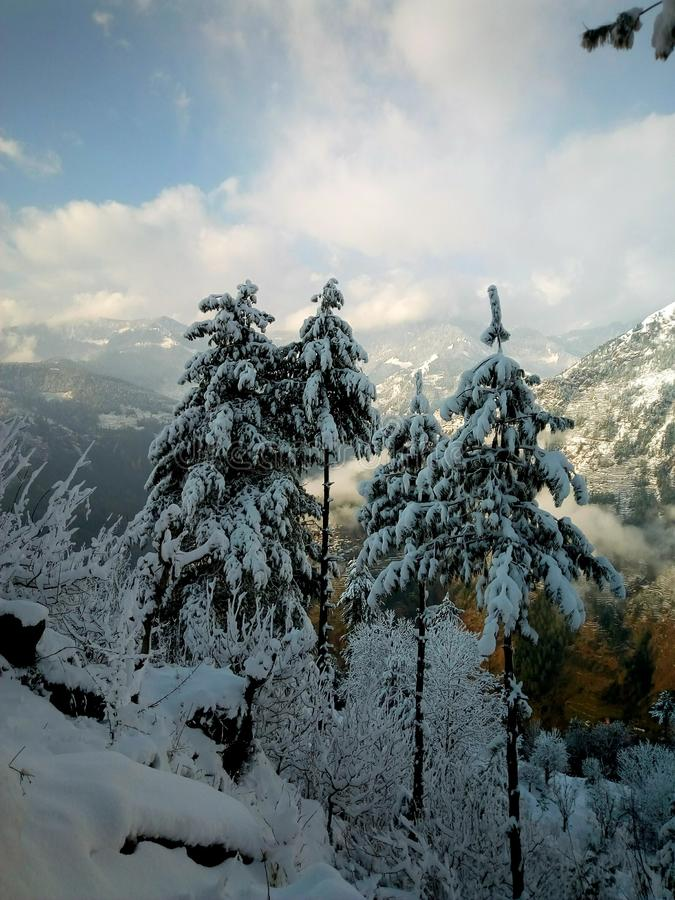 Winter trees covered by snow with cloudy blue sky. Winter trees covered snow cloudy blue royalty free stock images