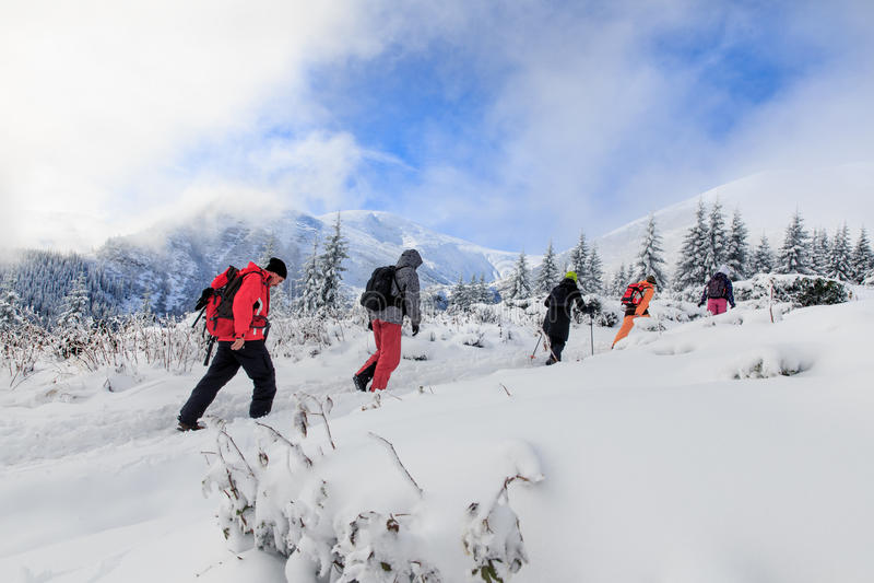Winter-Trekking in den Karpatenbergen lizenzfreie stockfotos
