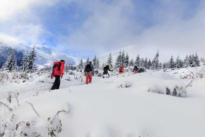 Winter-Trekking in den Karpatenbergen stockbilder