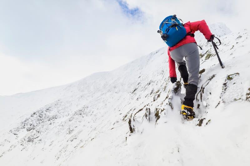 Winter Trekking royalty free stock images