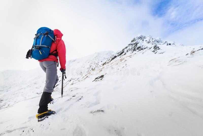 Winter Trekking royalty free stock photography