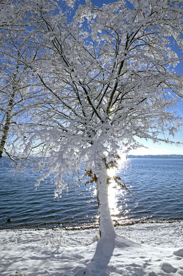 Winter in Tutzing on Lake Starnberg, Germany. Winter in Tutzing on Lake Starnberg, Bavaria, Germany, Europe stock photography