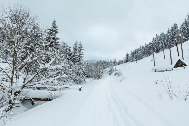 Winter Ukrainian Carpathian Mountains landscape. Winter mountain village. Wooden bridge and snowy rural road on slope of Ukrainian Carpathians in cloudy weather royalty free stock images