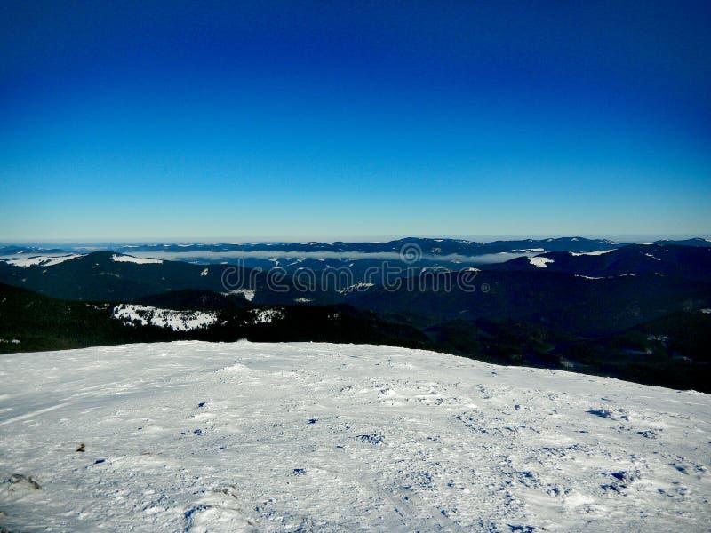 Winter Ukrainian Carpathians stock image