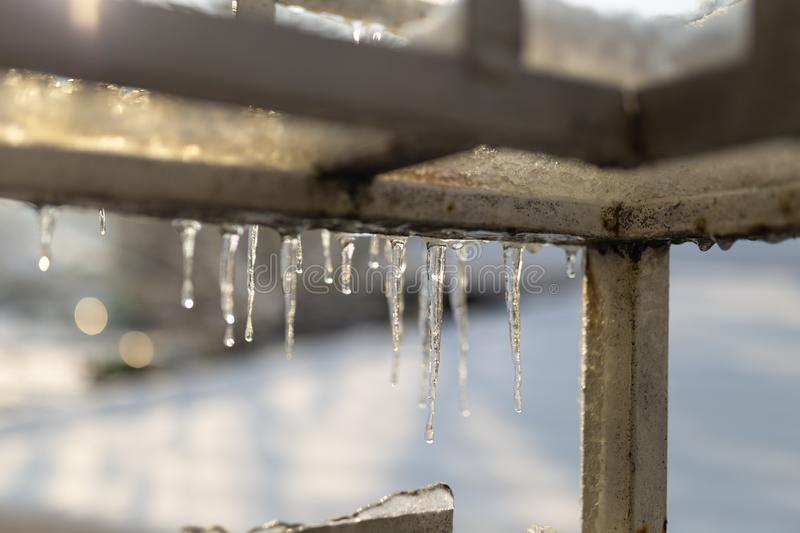 Winter urban landscape nature royalty free stock images