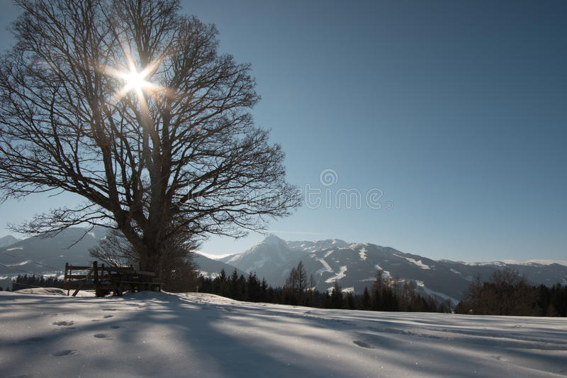 Winter view in Austria royalty free stock images