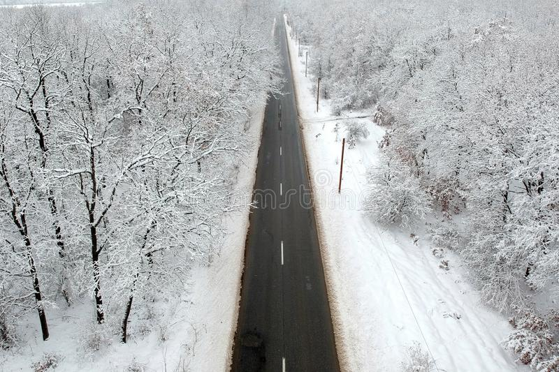Winter view of a road in the middle of the forest stock photography