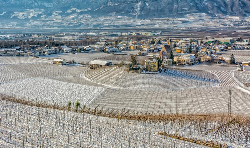 Winter vineyards landscape, covered with snow. Trentino Alto Adige, Italy. Main economic factors are viticulture along the South T. Yrolean Wine Route from royalty free stock image