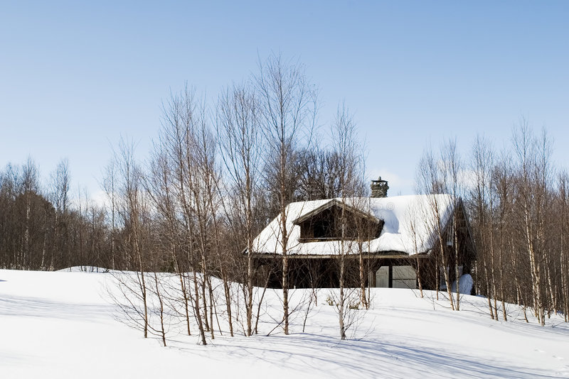 Winter-Waldkabine stockfotografie