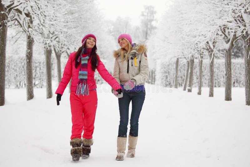 Winter walking royalty free stock images