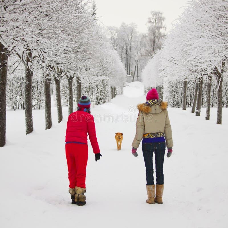 Winter walking royalty free stock photo