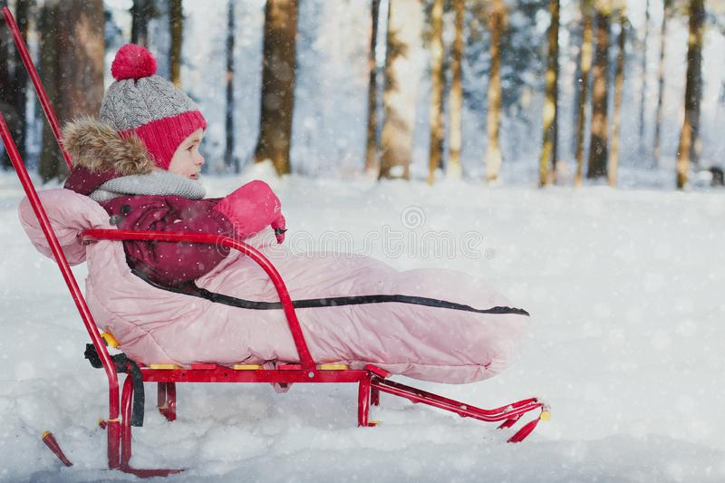Winter walks with a child. A little girl sits on a sled in the winter forest in snowfall, place for text stock image