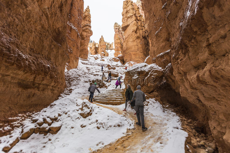 Winter-Wanderer in Bryce Canyon National Park stockfotos