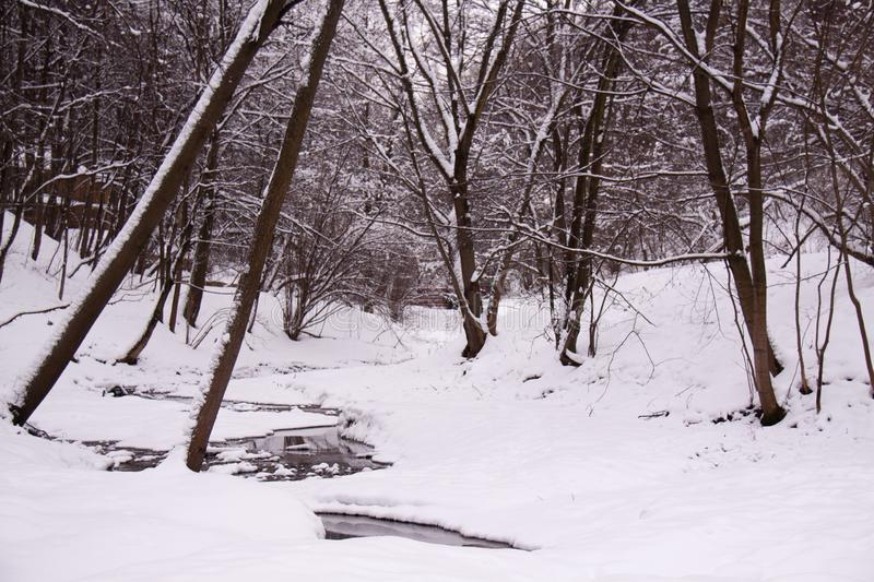 Winter water in a stream and snow royalty free stock image