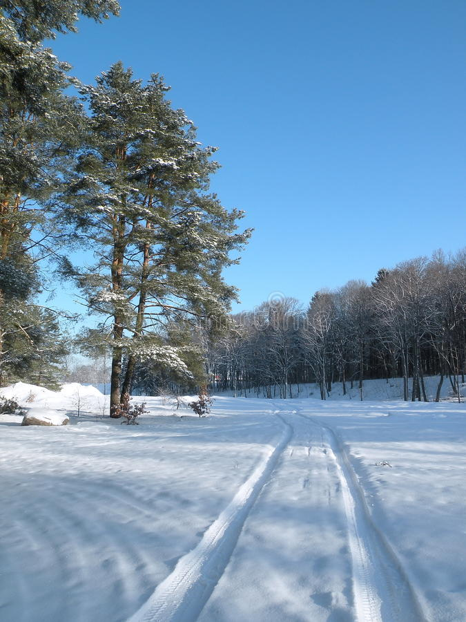 Free Winter Way Stock Image - 26209491