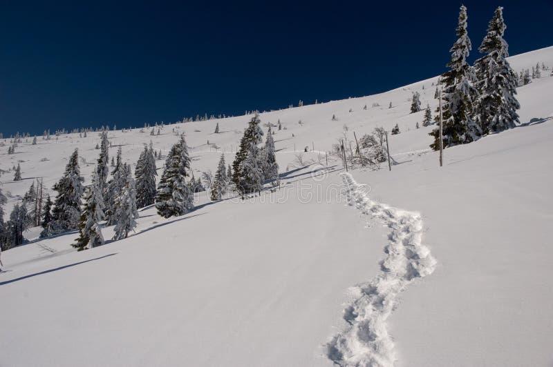Winter way running onto hill top stock photos