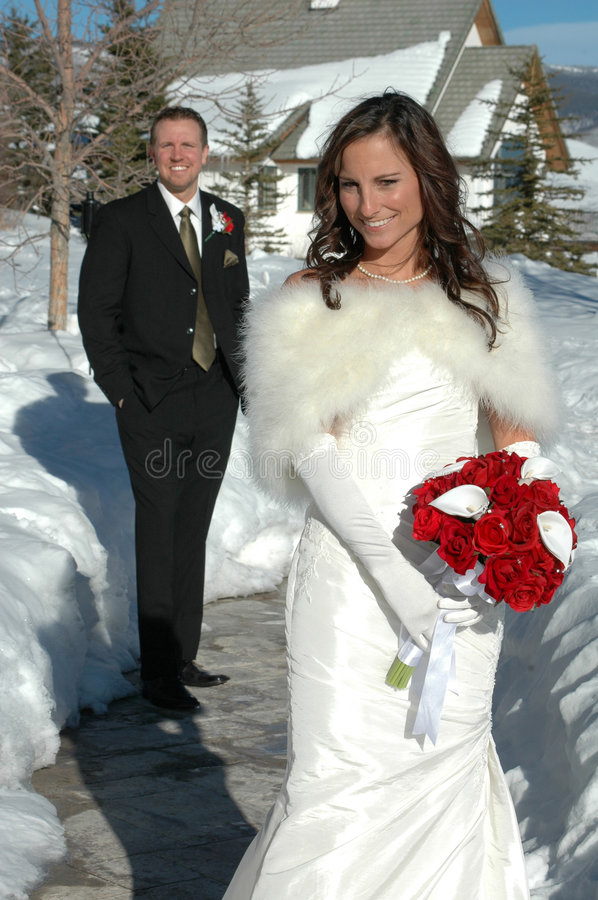Winter Wedding. Bride and Groom in the winter snow after their wedding. Bridal portrait stock images