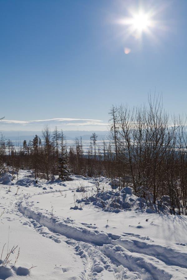 Winter-Weihnachtspostkartenansicht lizenzfreie stockfotos