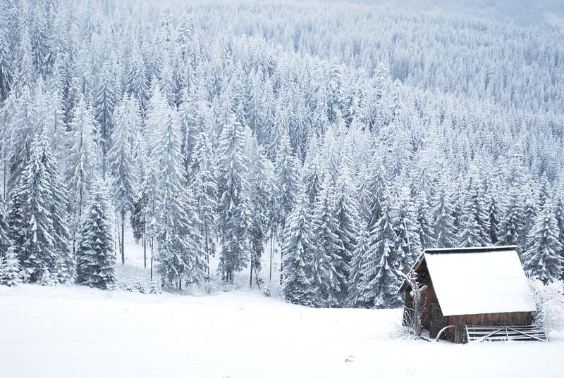 Winter. White winter on the hill royalty free stock photos