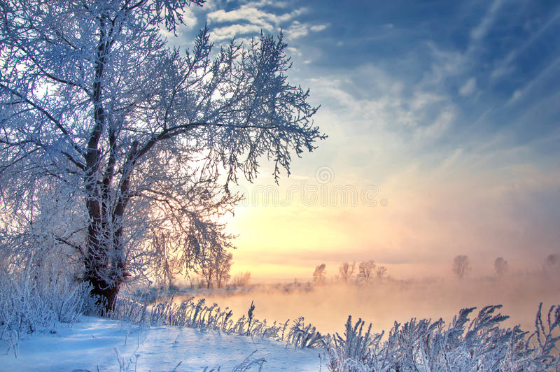 Winter, winter-tide, winter-time royalty free stock photography