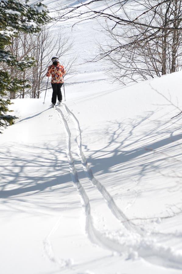 Winter woman ski stock image