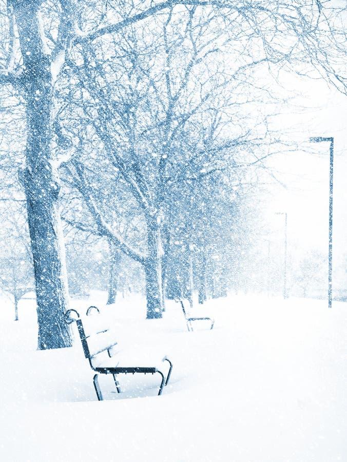 Free Winter Wonderland Royalty Free Stock Photos - 3906888