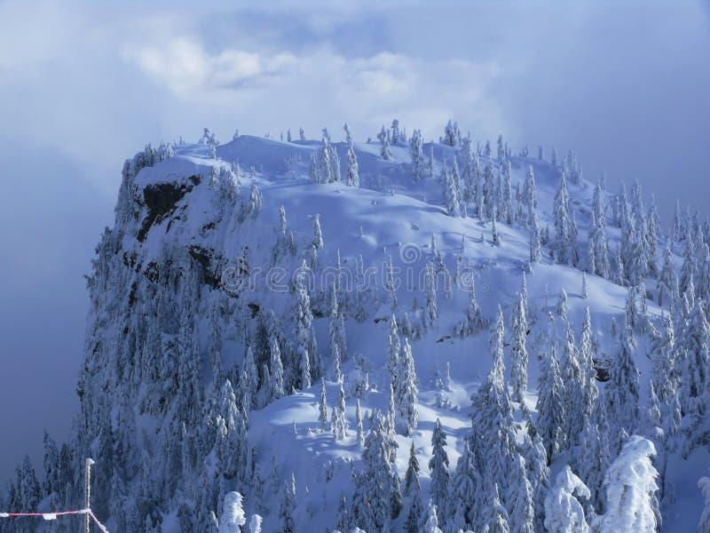 Download Winter wonderland stock photo. Image of mountain, snow - 3968718
