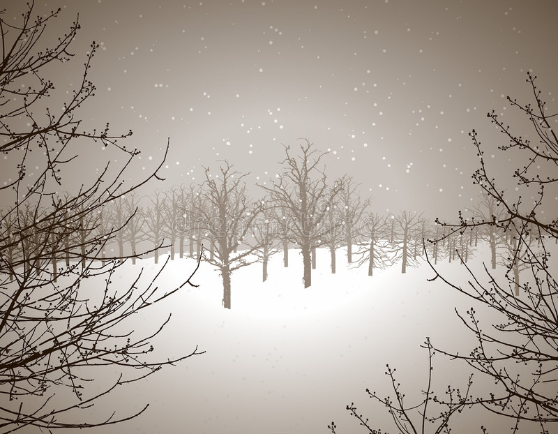 Winter wonderland. Winter scene illustration vector illustration