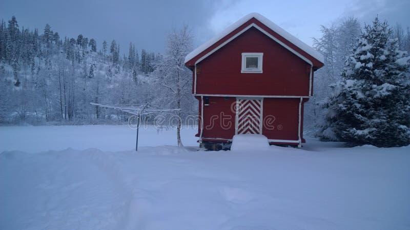 Winter wonderland. royalty free stock image
