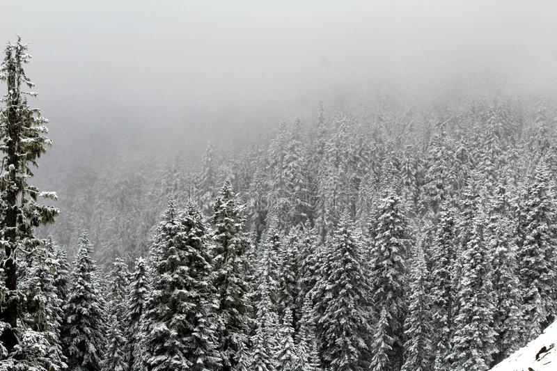 A winter wonderland covers the valley as a fog starts to roll in stock image