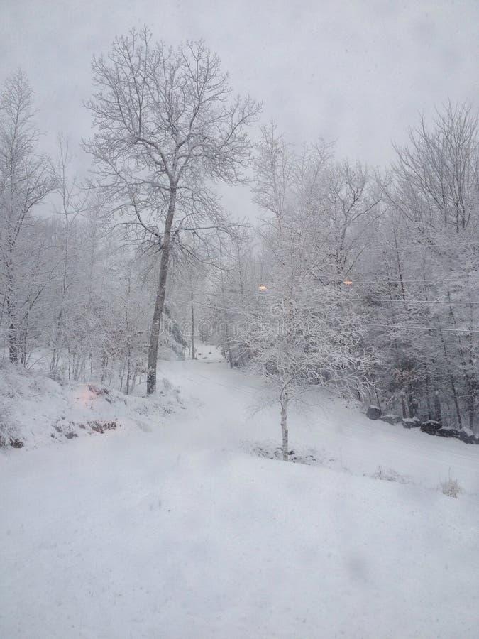 Winter-wonderland in Maine royalty free stock photos